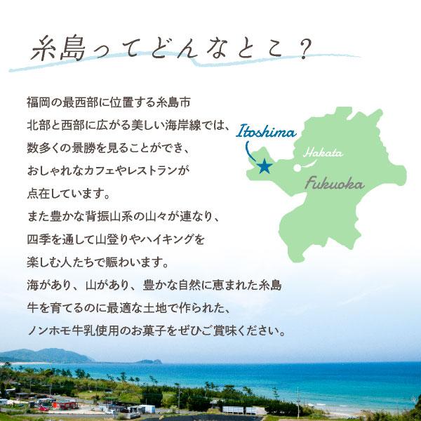 糸島ミルクブランド ラングドシャ 9枚入 (宅急便発送) proper