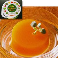 【冷凍】NEW野菜とくだもののゼリー 50G 40食入 (ヤヨイサンフーズ/洋風デザート/ゼリー)