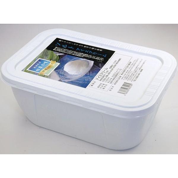 【冷凍】ソルトアイスクリーム 2L (ASOジャパン/冷凍アイス/アイスクリーム)