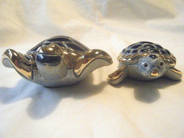 アーテサニア・リンコナダ・コレクション 海カメ(リアル)