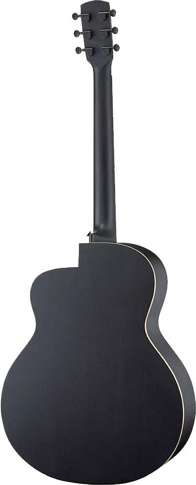 aNueNue/aNN-LL16 Lumiblack Bird アコースティックギター【アヌエヌエ】