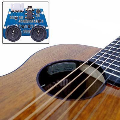 aNueNue aNN-M32E Bird Guitar Series Solid Koa Top エレクトリックアコースティックギター【アヌエヌエ】
