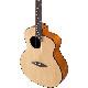 aNueNue/aNN-L12 Feather Bird アコースティック・ギター【アヌエヌエ】