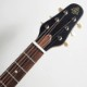 ESP/Charプロデュース BambooInn-CE STBK See Thru Black バンブーイン