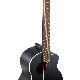aNueNue/aNN-ML16 Lumiblack Bird アコースティック・ギター【アヌエヌエ】