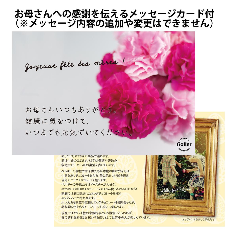 【4月2日より順次出荷予定】【母の日ギフト】【送料無料】MINI'S BARS ミニバー 5個入 カーネーションセット(メッセージカード付き)