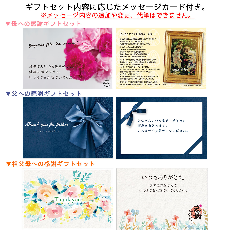 【母の日ギフト】【送料無料】クッキー 12枚入詰め合わせ カーネーションセット(メッセージカード付き)