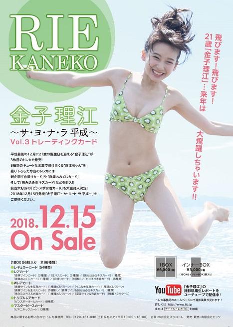 金子理江 〜サ・ヨ・ナ・ラ平成〜 Vol.3トレーディングカード BOX■特価カートン(20箱入)■(BOX特典付)