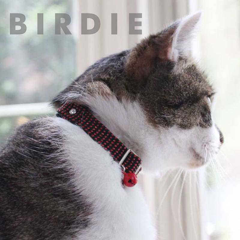 CATメタチューブカラー【BIRDIE猫用首輪】
