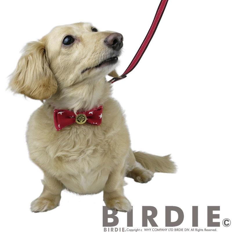 M コインメタルカラー【BIRDIE(バーディ)小型犬ワンタッチバックル首輪】