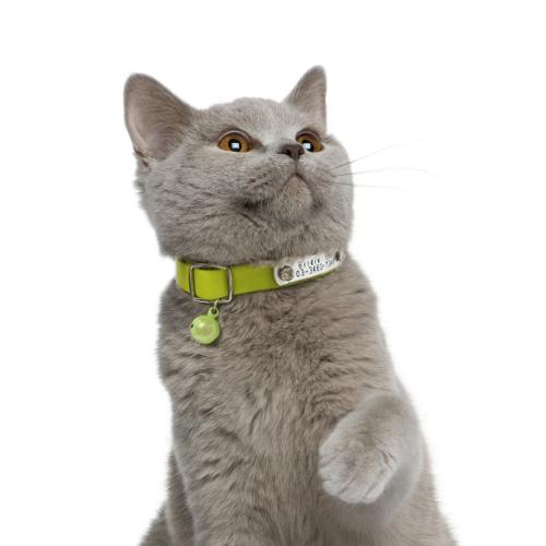 CAT's IDカラー【BIRDIE猫専用迷子首輪】
