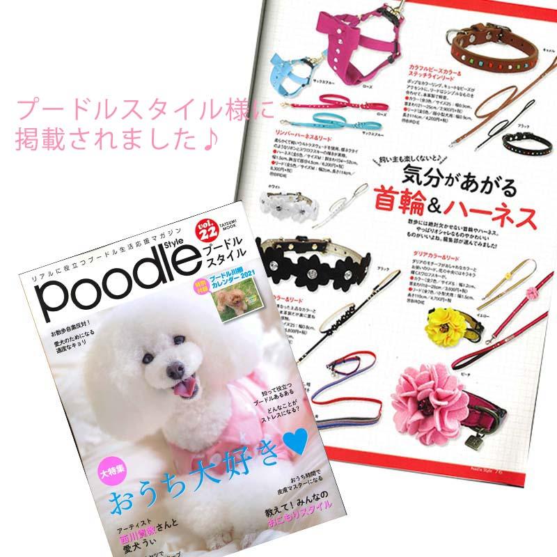 25 カラフルビーズカラー【BIRDIE超小型犬・猫用革首輪】