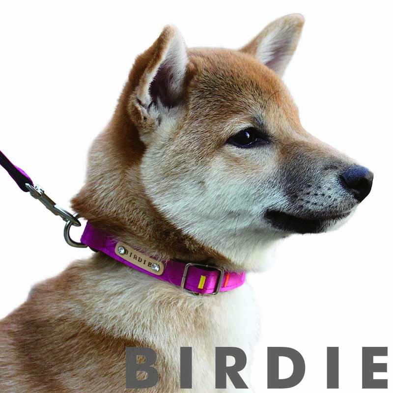 SS アイフレックスカラー【BIRDIE(バーディ)超小型犬用ワンタッチバックル首輪】