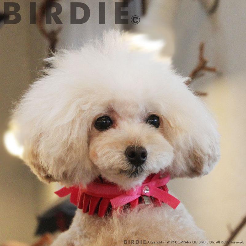 フランソワカラー【BIRDIE小型犬アクセサリー首輪】