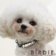 21 フラットレザーIDカラー【BIRDIE小型犬・猫用迷子首輪】