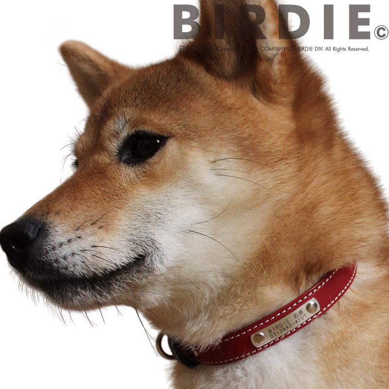 40 フラットレザーIDカラー【BIRDIE中・大型犬迷子首輪】