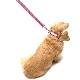 SS モノグラムリード【BIRDIE(バーディ)超小型犬用カフェタイプリード】