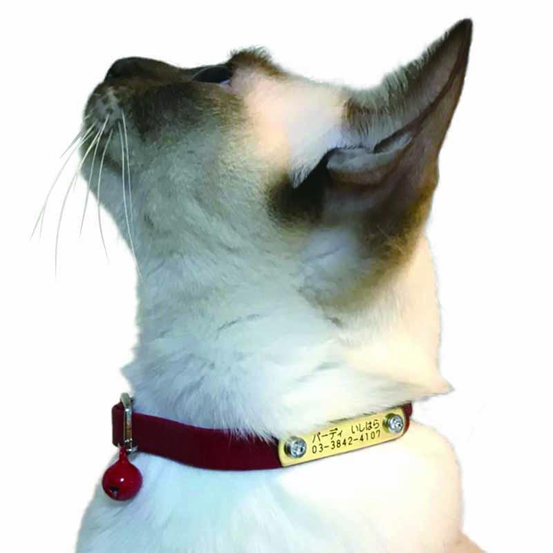 CAT'S IDカラー【BIRDIE猫専用セーフティバックル迷子首輪】