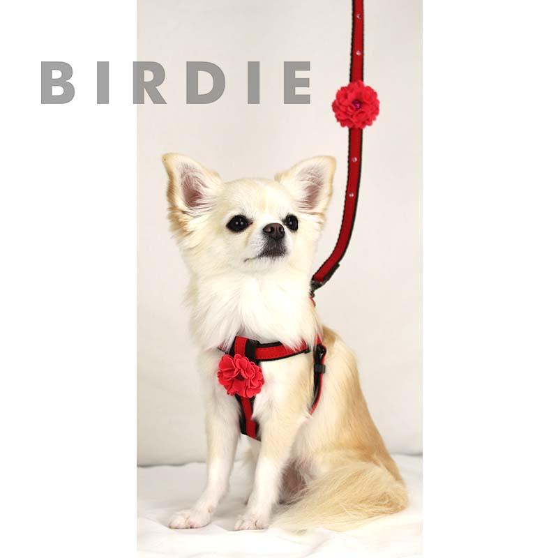 SM ダリアハーネス【BIRDIE(バーディ)小型犬ワンタッチバックル胴輪】