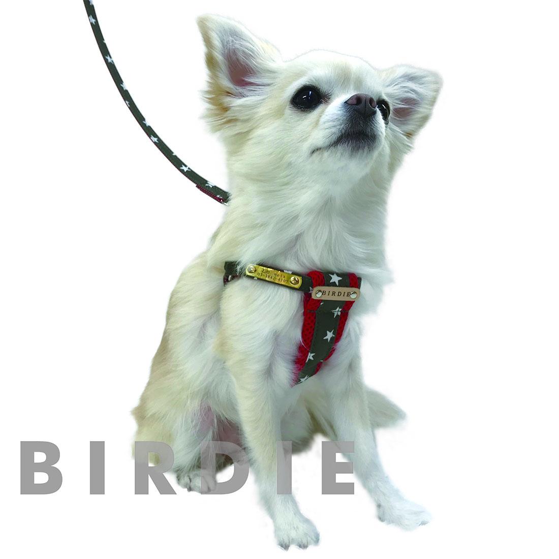 S スターデニムクッションIDハーネス【BIRDIE小型犬迷子防止ワンタッチバックル胴輪】