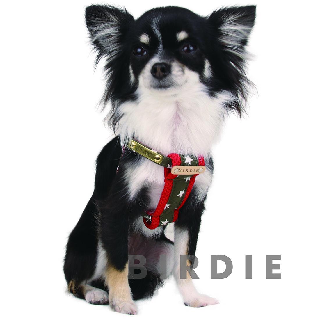M スターデニムクッションIDハーネス【BIRDIE小型犬迷子防止ワンタッチバックル胴輪】