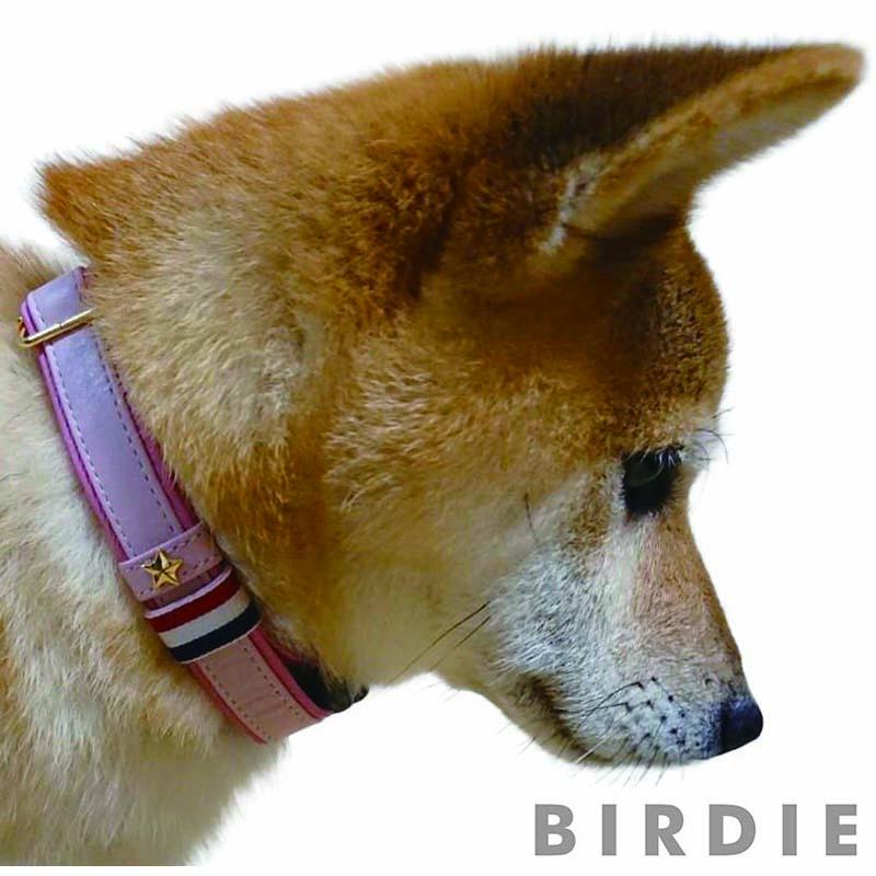 M スターソフトレザーIDカラー【BIRDIE迷子ワンタッチ本革製首輪】