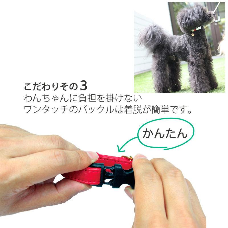 SS ジェントルIDカラー【BIRDIE迷子ワンタッチ本革製首輪】