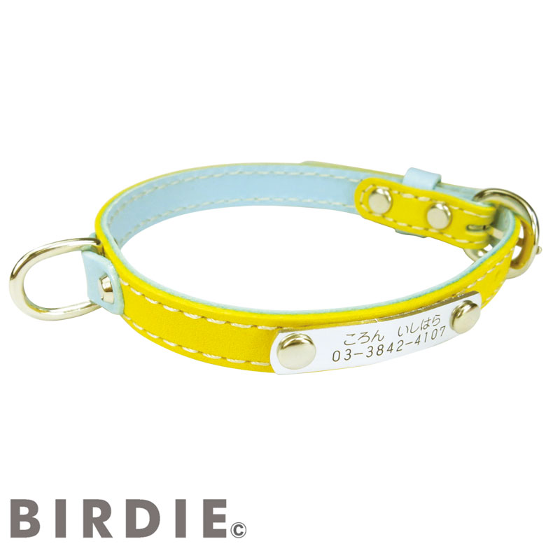 32 IDカラフルレザーバイカラー【BIRDIE小型中型犬用迷子首輪】
