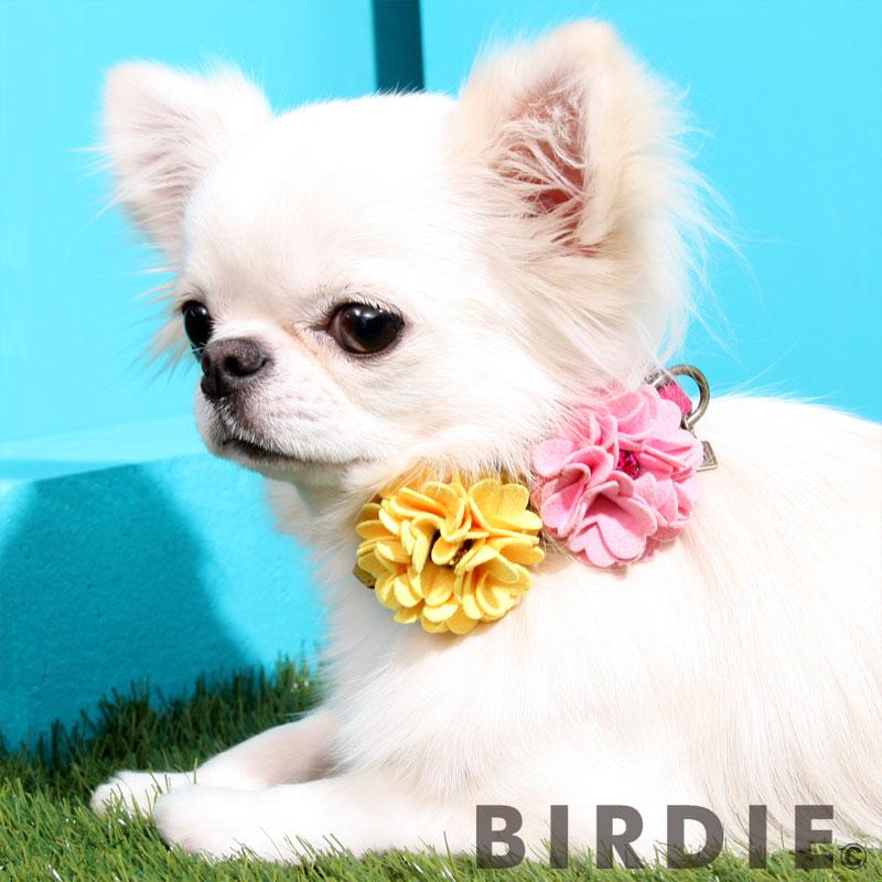 M ダリアカラー【BIRDIE(バーディ)小型犬ワンタッチバックル首輪】