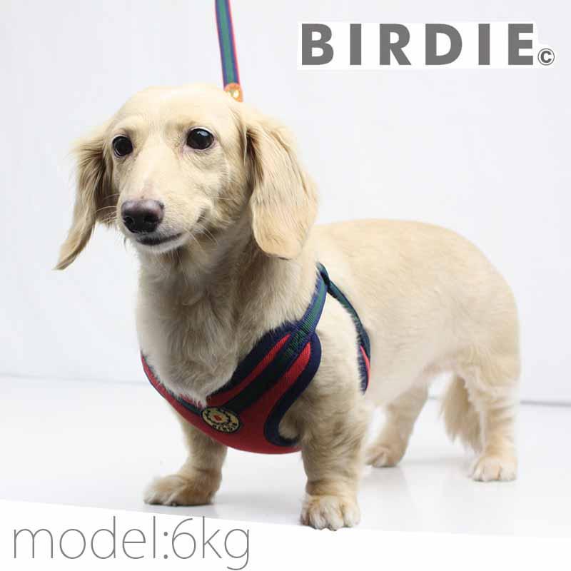 S ローレルストライプソフトハーネス【BIRDIE(バーディ)小型犬用胴輪】