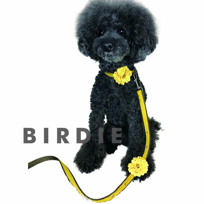 ダリアのリード【BIRDIE小型犬リード】
