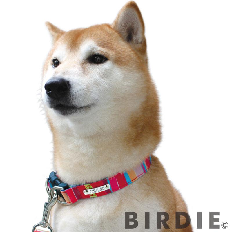 M マルチボーダーIDカラー【BIRDIE中型犬迷子防止首輪】