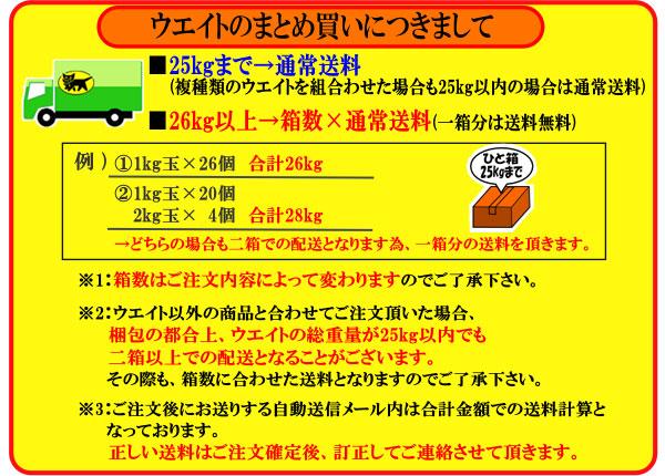 日光社 ソフトウエイト0.5kg[804390090200]