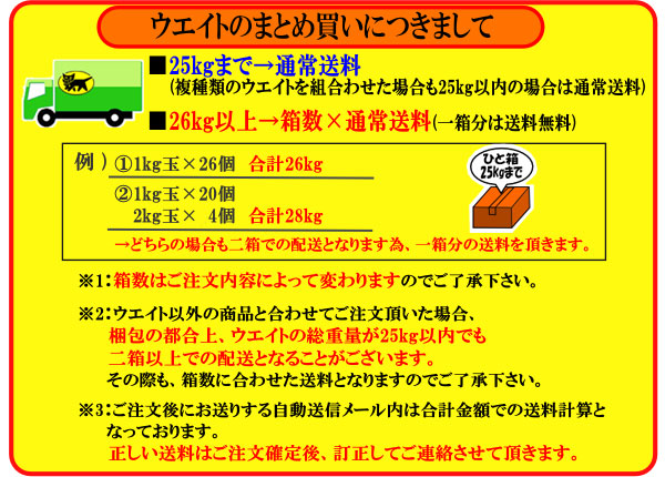 日光社 ダイビングウェイト ソフトウエイト2kg