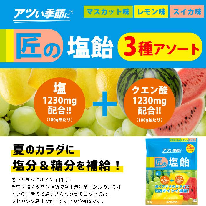 熱中症対策 サラヤ塩分補給キャンディ 匠の塩飴3種アソート750g マスカット味・レモン味・スイカ味 #27860