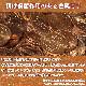 触らない 感染症対策 接触感染回避 コッパーフック 純銅99% 予防 コンパクト 便利グッズ 日本製 タッチレス[M便 1/8]