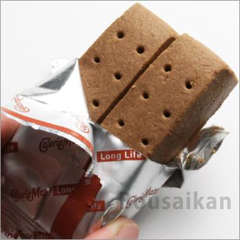 カロリーメイトロングライフ[2本入×60個セットのケース販売]チョコレート味(大塚製薬/非常食/保存食)