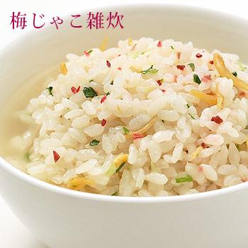 非常食 アルファ米 マジックライス 梅じゃこ 梅雑魚 ご飯  100g×20食入 ケース販売 サタケ