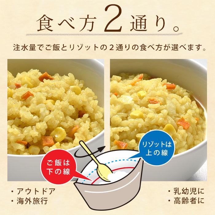 非常食 アルファ米 マジックライス ドライカレー 100g×20食入 ケース販売 サタケ【賞味期限2025年6月迄】