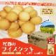 非常食 尾西のライスクッキー8枚入 ココナッツ風味 48個 ケース売り 米粉クッキー ビスケット 保存食 お菓子