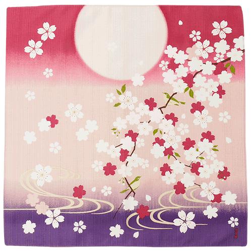 小布 桜にうぐいす