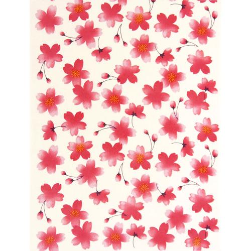 てぬぐいのはんかち 金封 寿 ほのぼの桜 赤オフ