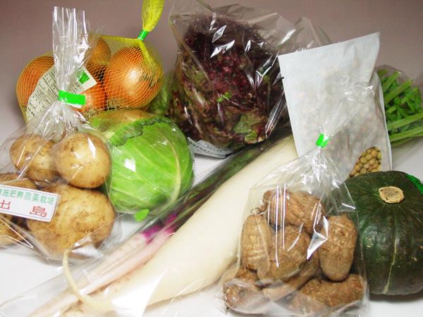 【無肥料・自然栽培】旬の野菜・果物のお任せセットの定期宅配(野菜・果物の少ない時期は、乾物や加工品も)※除外作物登録可【v4000】