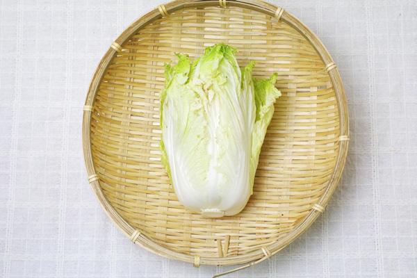 【無肥料・自然栽培】ミニ白菜[鳥取県:西川真さん]【v800】※11月23日(月)入荷分