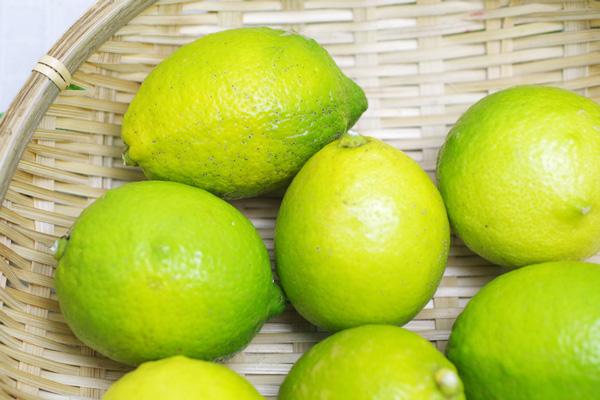 【無肥料・自然栽培】グリーンレモン1kg[広島県:国広自然栽培農園]【v1000】