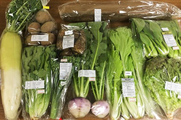 【無肥料・自然栽培】旬のお野菜・果物の選べるセットの定期宅配★欲しいお野菜だけをお送りします【v4000】