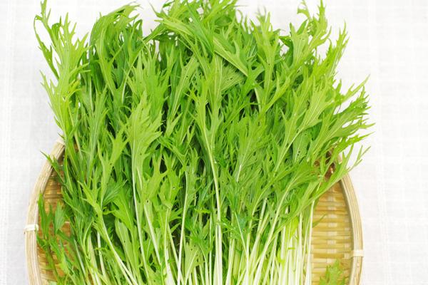 【無肥料・自然栽培】水菜[長野県:とやざき農園さん]【v400】