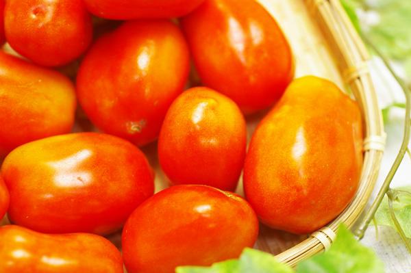 【無肥料・自然栽培】サンマルツァーノトマト500g 加熱により旨みが増すトマトソースに最適[愛知県:桑田農園]【8月12日入荷分】【v500】