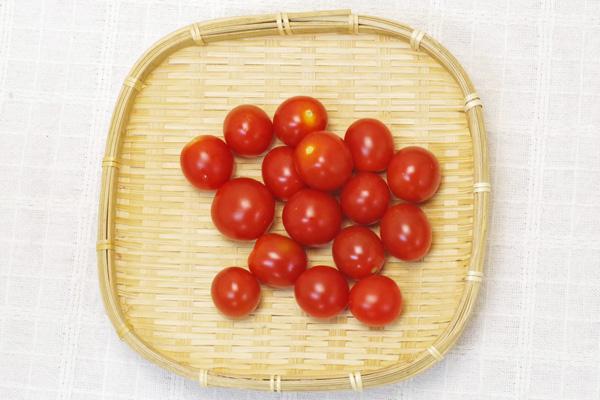 【無肥料・自然栽培】ミニトマト150g[京都府:ポトンファーム]【v400】