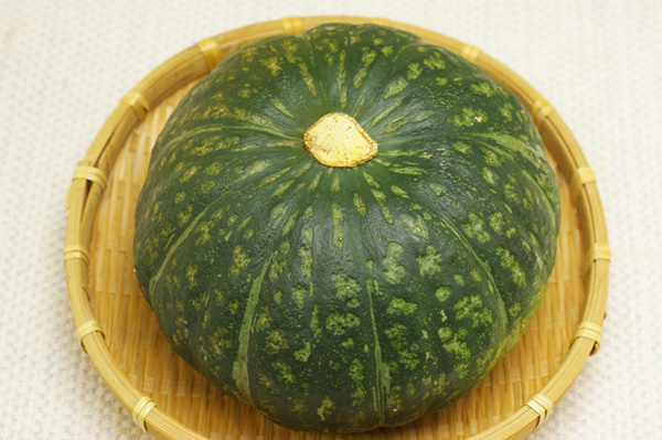 【無肥料・自然栽培】自家採種みやこ系カボチャ[北海道:白瀬農園]【9月21日(金)入荷分】